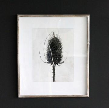 Sepia Floral Print II